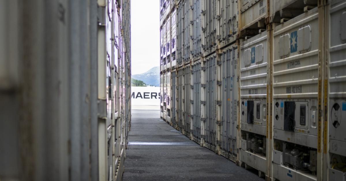 Kjølecontainer og frysecontainer: Hva er forskjellen?