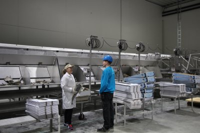 Hva kan Kulde og Elektro gjøre for klippfiskindustrien?